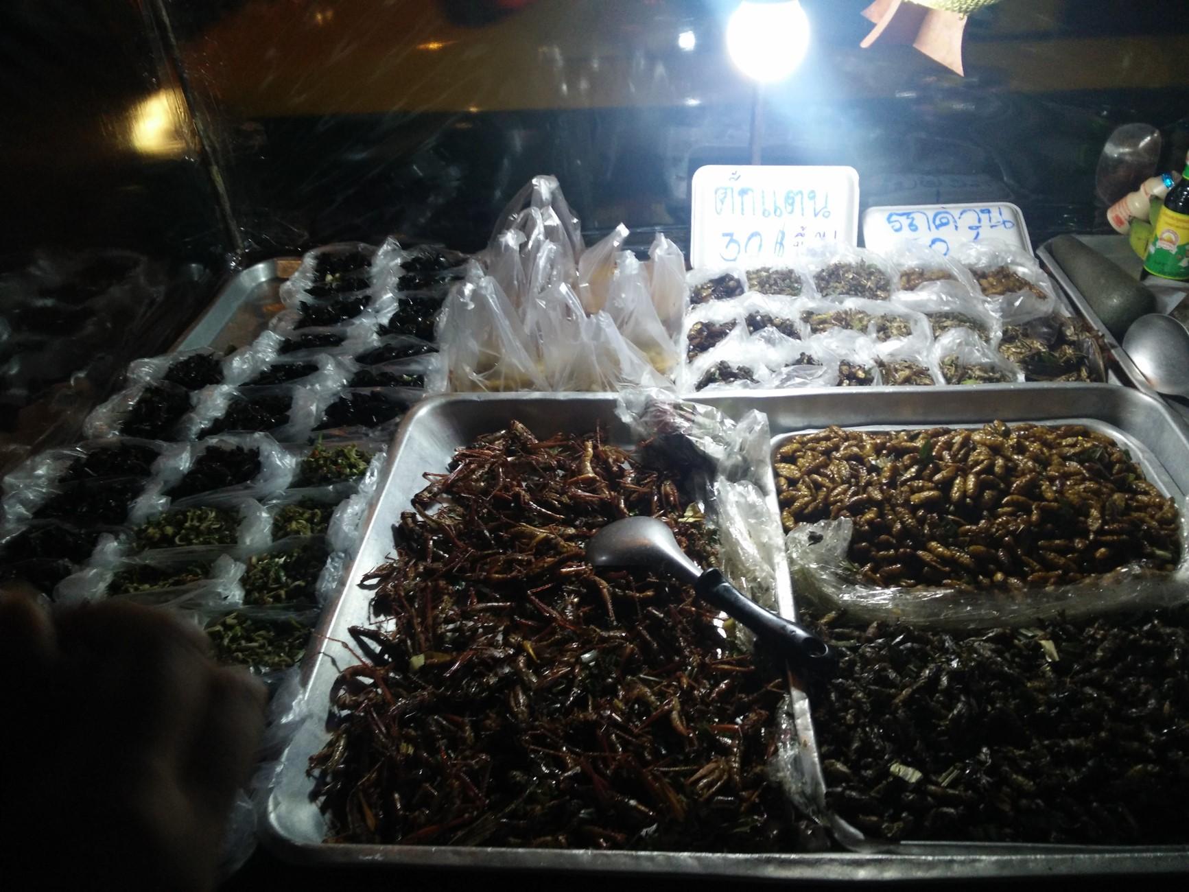 bugs in bangkok