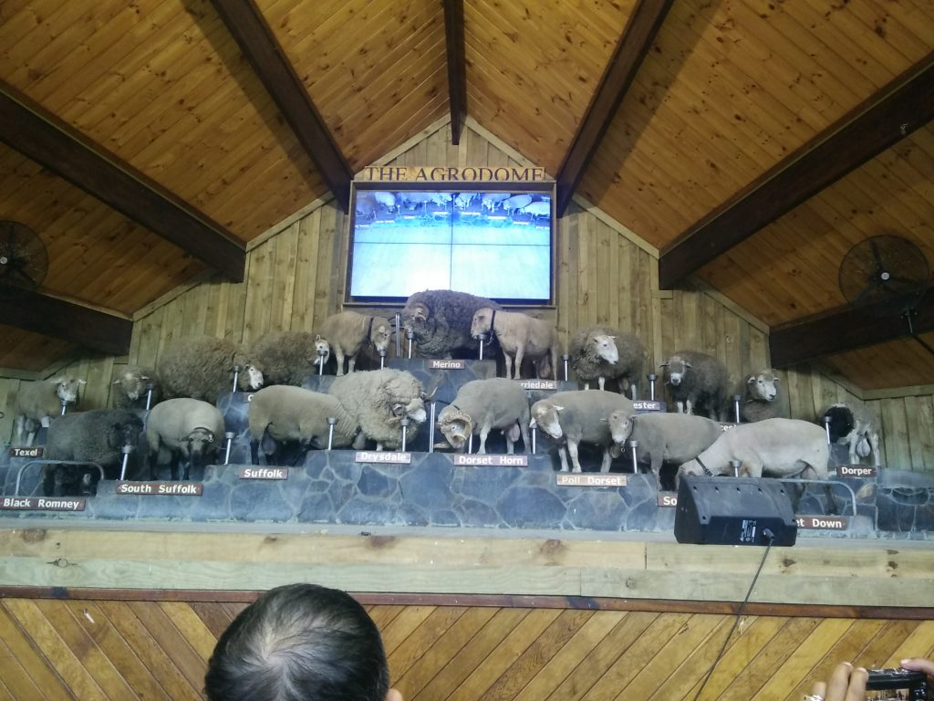 agrodome farming show in new zealand