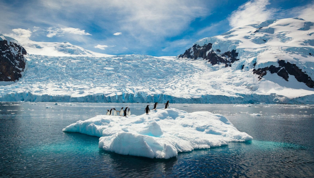 Antarctica and penguins